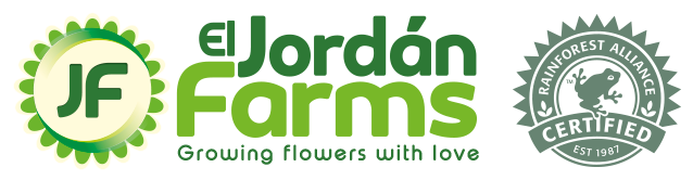 Logo El Jordán Farms y Logo Rainforest Alliance