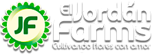 Welcome to El Jordán Farms