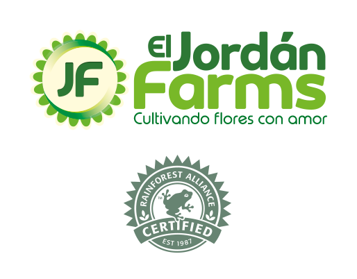 Logo El Jordán Farms con certificado Rainforest Alliance